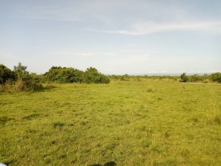 Registered Land for sale at Amasaman